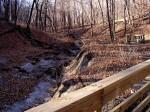 Riley Creek Trail